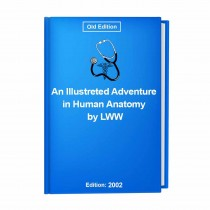 An Illustreted Adventure in Human Anatomy by LWW