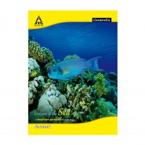 Classmate A4 Notebook (Soft Cover) Pack of 3