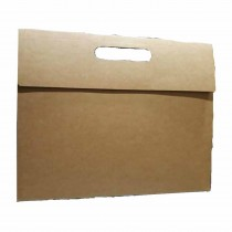 Expo Eco Friendly Box Type File Carrier (Pack of 25)