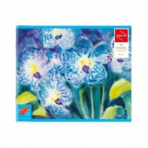 Navneet Youva Blue Drawing Book Square (23x27.5)cm 36 Pages (Pack of 2)