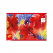 Navneet Youva Drawing Book Mini (17x24.5)cm (Pack of 3)