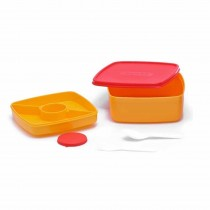 Nayasa Double Decker Lunch box Kids Lunch Box (Pack of 6)