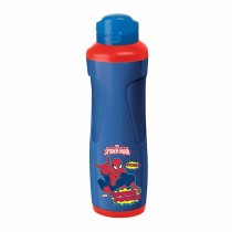 Nayasa Fling Insulated Water Bottle 700 ml