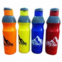 Nayasa Trekking Insulated Water Bottle 700 ml