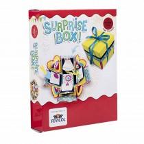 Pidilite Diy Craft Kit ( Diy Suprise Box)