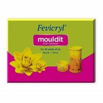 Pidilite Fevicryl Mouldit 800 gms