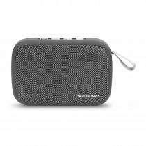Zebronics Delight Portable Wireless Speaker